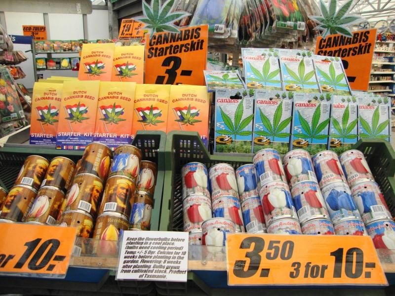 precios-kit-plantas-marihuana