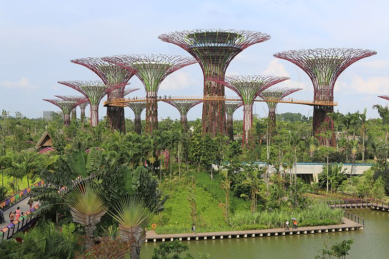 gardens-by-the-bay-supertree-forest-wikipedia