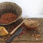 Cacao listo para tostarse