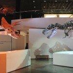 Dinosaurios, Momias y Más de Naturaleza