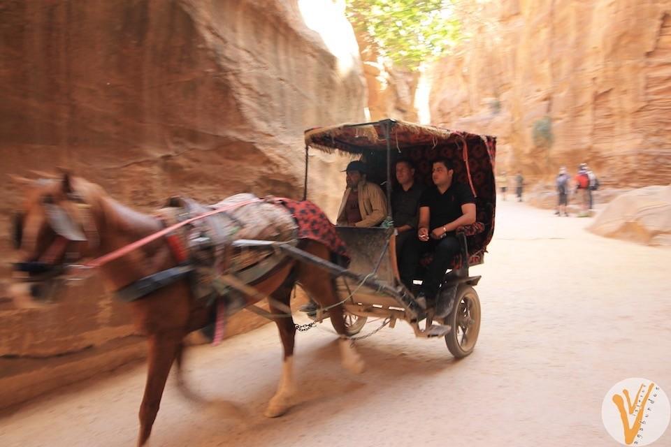 Carreta en Petra