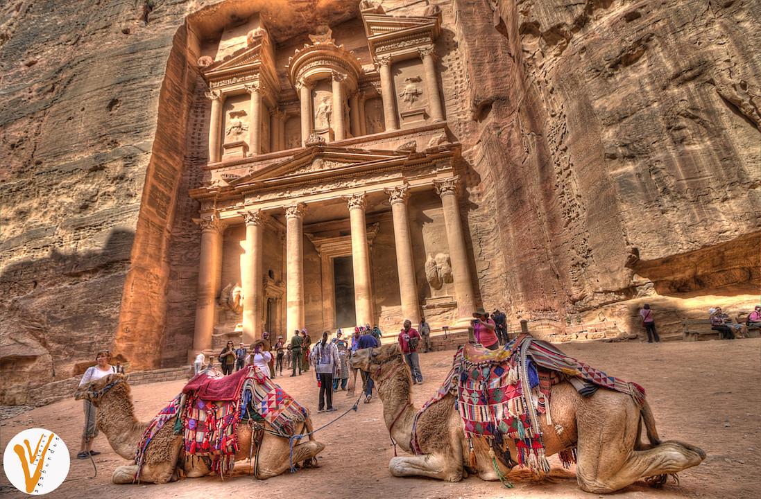Camellos frente a Petra