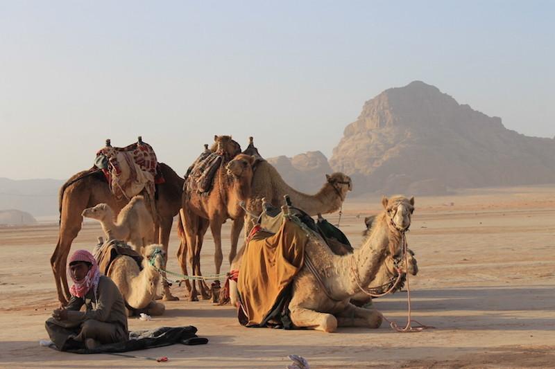 Wadi Rum, un Desierto Fuera de Este Mundo