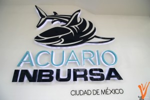 acuario1