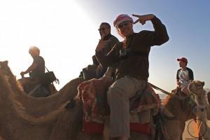 camellos3