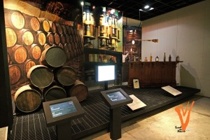 museo del tequila5